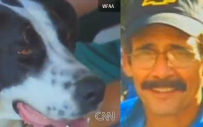 Spot il cane che commuove gli USA