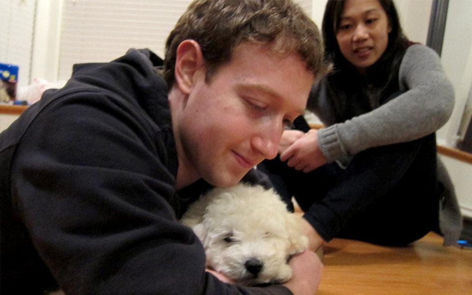 Beast il cane di Zuckerberg su Facebook
